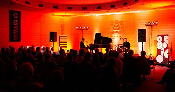 Boogie & Blues Band Hamburg |Programme und Bands mit Matthias Schlechter